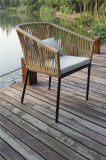 يسترخي تصميم جديدة [رستورن] حديقة [ويكر] كرسي تثبيت وحيد