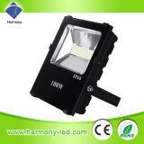 빛을 적합한 옥외 방수 IP65 100W LED RGB 별장