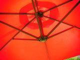 3mの分解のタイプバナナの傘