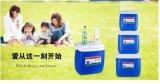 Caixas reusáveis do refrigerador do gelo do produto comestível para o curso