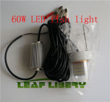 12V 60W Underwater White LED Fishing Light、Snook Light、Dock Night Fishing With Case
