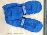 Het Skien van de Sport van de winter Handschoenen, en voor het Berijden en Visserij