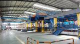 Elektromotor mit Tonnen-elektrischer Kettenhebevorrichtung der Verkleinerungs-Gear-2.5 mit Haken