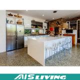 Einfache Entwürfe Belüftung-Küche-Schrank-Möbel (AIS-K208)