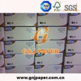 Sandwich Food Wrapping를 위한 18GSM High White Tissue Wrap Paper