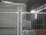 Niedriger Preis schweißte Maschendraht-galvanisierten geschweißten Maschendraht-Kurbelgehäuse-Belüftung beschichteten Maschendraht-Zaun-Lieferanten/geschweißten Maschendraht-Wand-Zaun