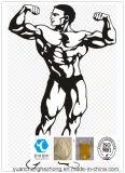 Aumentare l'acetato totale di Trenbolone della polvere degli steroidi di Bodybuilding del muscolo