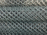 Link Chain Fence Galvanzied/PVC Coated (fabbrica reale) è su Hot Sale