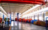 Machine verticale d'immobilisation de Cll pour le câble submersible, la meilleure qualité