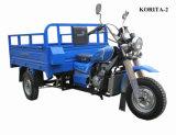 最もよく新しいモーターを備えられた小屋の貨物3車輪のオートバイ