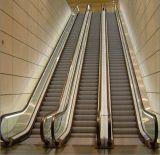 Escalator intérieure avec une bonne qualité Cheap Prix