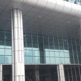 Rivestimento di alluminio della parete esterna 2017 all'esterno