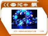 2016 schermo di visualizzazione dell'interno del LED di colore completo di alta qualità P6