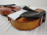 BV / SGS Certificado de proveedor --- Satin Rojo Marrón Brillo Moderado Todo Violin hecho a mano