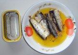 Peixes enlatados da cavala no petróleo vegetal