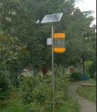 Presa alimentata solare del parassita di insetto della zanzara