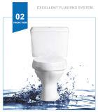 Weidansi en céramique lavent P-Enferment vers le bas deux parties de la toilette (WDS-T6208)