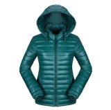 Las señoras adelgazan las capas del invierno, chaqueta del invierno de 2016 mujeres