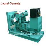 Раскройте тип генератор дизеля 30kw