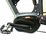 Bici eléctrica de la montaña de alta calidad (LN26M1502)