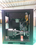 Energia-risparmio permanente Screw Air Compressor 37kw (50HP) di Magnetic Vf