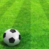 qualidade do futebol de 40mm a boa ostenta a grama artificial sintética do relvado