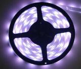 Heißer Verkauf! ! Wasserdichte LED Licht-Streifen 12/24 Volt-
