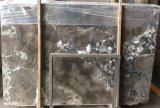 Losas de mármol grises del nuevo diseño, el panel de pared del PVC, losas de mármol cultivadas