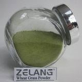Il produttore direttamente fornisce la polvere organica solubile in acqua dell'erba del frumento di usda