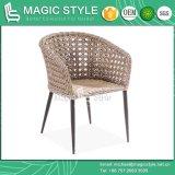 テラスの椅子新しいデザイン椅子のコーヒー椅子の藤の椅子の籐椅子の高品質の椅子(魔法様式)