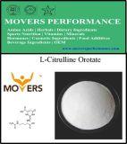 Nutrição de alta qualidade suplemento L- citrulina Orotate