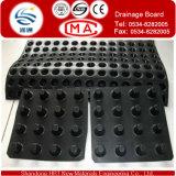 Basement DrainageのためのカスタマイズされたHDPE Drain Board Used