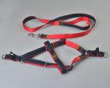 Поводок проводки ковбоя собаки любимчика регулируемой планки