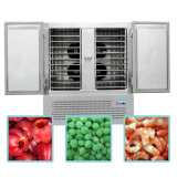 2016 Cooling Freeze Réfrigérateur Restaurant & Supermarket Blast Chiller Freezer 003
