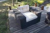 Sofà esterno del commercio all'ingrosso del sofà del blocco per grafici del metallo di alta qualità