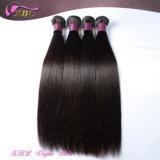 Cabelo brasileiro real do preço de grosso da fábrica do cabelo