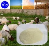 Proteina Iron (Alimentazione  Grado)