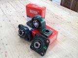 Het Blok die van het Hoofdkussen van Hhb Ucp204 (reeks UCP200) dragen