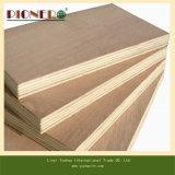 Commercial bianco Plywood per l'Algeria Market