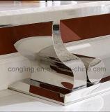 Tribune van TV van de manier de Witte Marmeren met Roestvrij staal CT8035