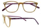 Telaio dell'ottica dell'ultimo di modo di spec. dei blocchi per grafici di modo acetato di Eyewear