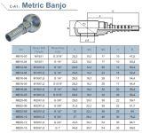 Hydraulic CylinderのためのメートルHydraulic Fitting