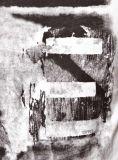 Лета шеи печатание Waterbase тенниска людей хлопка белого круглого изготовленный на заказ оптовая