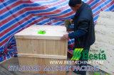 Vara de bambu do BBQ que faz a máquina, Skewer de bambu que faz a máquina
