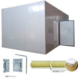 Quarto Frozen de Meat Storage Cold por plutônio Cam Lock Panels