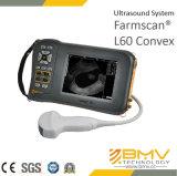 Scanner van de Ultrasone klank van Farmscan L60 de Veterinaire