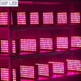 O sistema diodo emissor de luz do Hydroponics cresce 300W claro para a estufa