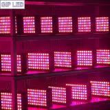 Система СИД Hydroponics растет светлое 300W для парника