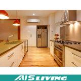 Mobília contemporânea dos gabinetes de cozinha com dispositivo elétrico (AIS-K223)