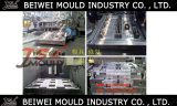 Vorm van de Pallet van de Injectie van de Fabrikant van China van de douane de Plastic